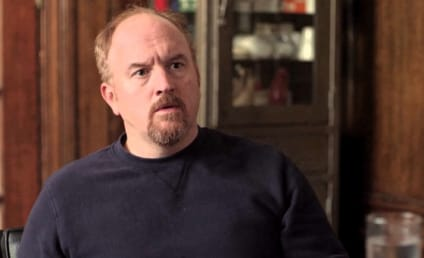 2014 Emmy Race: Who Should Win Lead Actor in a Comedy?
