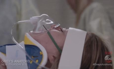 Watch Grey's Anatomy Online: Season 12 Episode 9