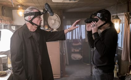 Ray Donovan Season 4 Episode 3 Review: Little Bill Primm's Big Green Horseshoe