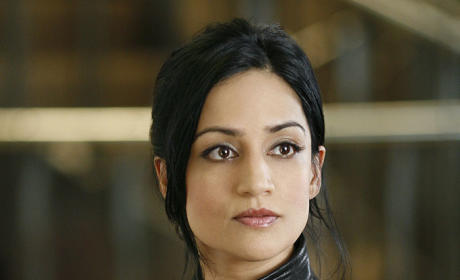 The Good Wife: Casting for Kalinda's Lover