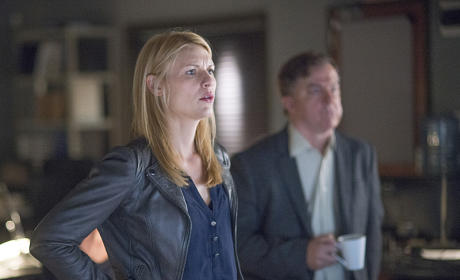 What Grade Would You Give to Homeland Season 5?