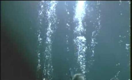 The Deep End Trailer