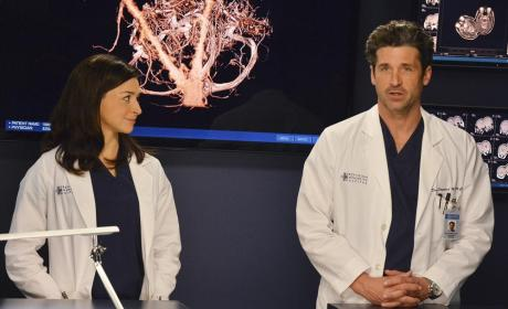 Caterina Scorsone Promoted to Series Regular on Grey's Anatomy