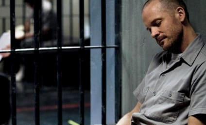 Peter Sarsgaard Previews Season 3 of The Killing, Dark New Role