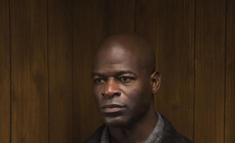 Hisham Tawfiq as Dembe