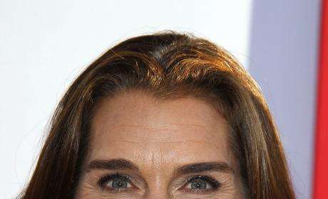 Brooke Shields to Play Pilot on Army Wives