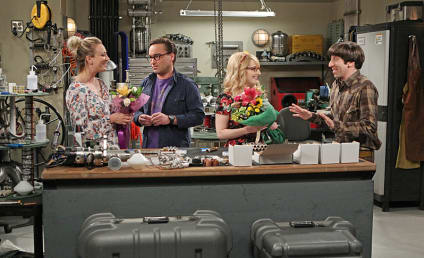 The Big Bang Theory Season 9 Episode 19 Review: The Solder Excursion Diversion