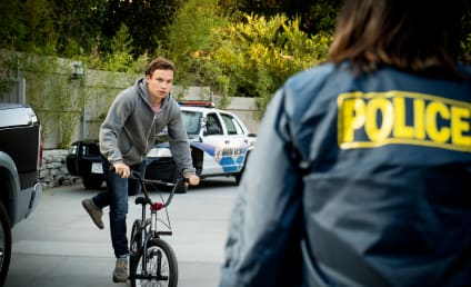 Animal Kingdom Season 1 Episode 10 Review: What Have You Done
