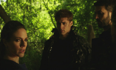 Lost Girl Review: Bo Finds Her Destiny