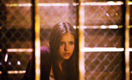 Elena Gilbert as a Vampire: First Imprisoned Look!