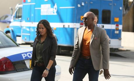 Rosewood Season 1 Episode 19 Review: Sudden Death & Shades Deep