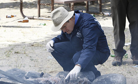 "NCIS Review: ""Patriot Down"""