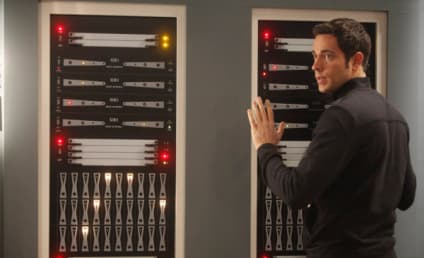 Zachary Levi Cast in Fox Sitcom Pilot