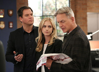 Watch NCIS Season 11 Episode 15 Online