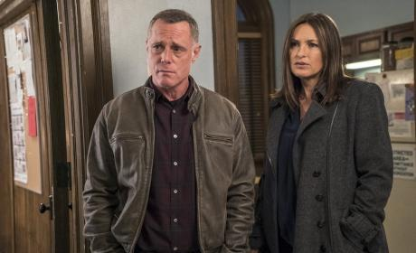 Chicago PD Photo Preview: SVU Returns to Chicago!