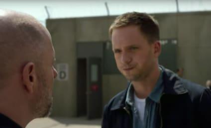 Watch Suits Online: Season 6 Episode 3