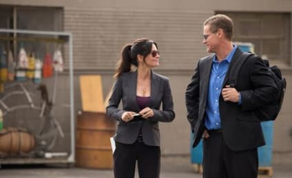 Cougar Town: Watch Season 5 Episode 11 Online