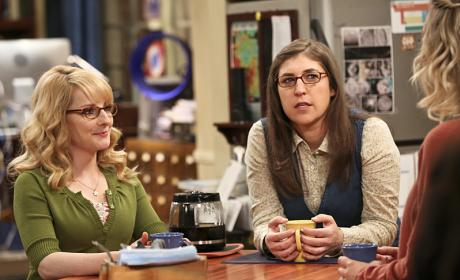 Who's Going to Be Maid of Honor? - The Big Bang Theory Season 9 Episode 24