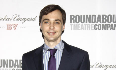 Jim Parsons or Pauley Perrette: Which CBS Star Do You Love More?