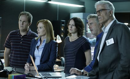 CSI Series Finale Review: Immortality