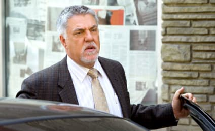 Bruce McGill to Lay Down the Law on The Good Wife