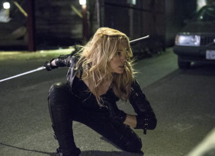 Watch Arrow Season 2 Episode 13 Online