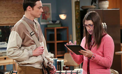 The Big Bang Theory: Watch Season 7 Episode 16 Online