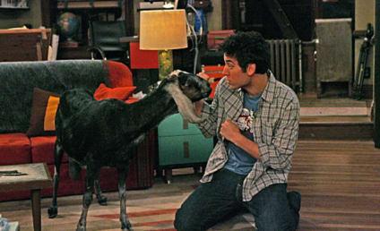 """How I Met Your Mother Season Finale Recap: """"The Leap"""""""
