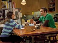 The Big Bang Theory Season 4 Episode 20