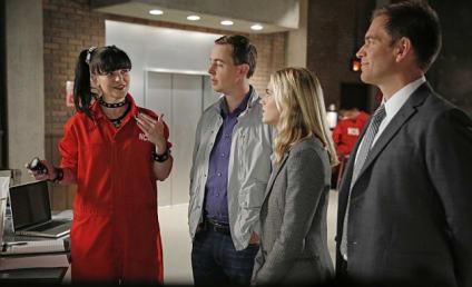NCIS Showrunner Teases Powerful Story Ahead, Abby's New Romance & More