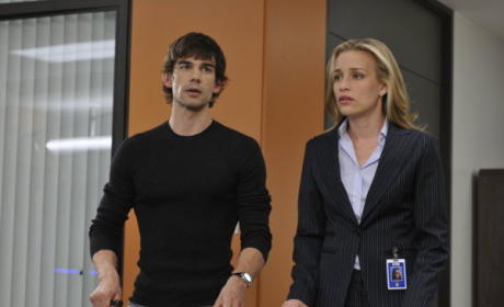 Covert Affairs Spoilers: The Truth About Auggie