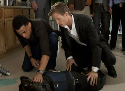 Watch Common Law Season 1 Episode 8 Online