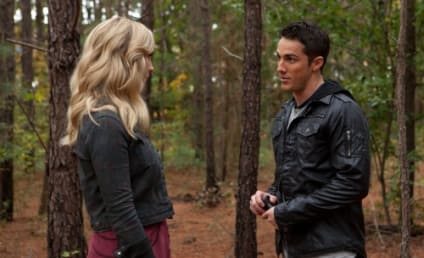 The Vampire Diaries Spoilers: Many More Werewolves to Come!