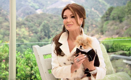 Does Lisa Vanderpump deserve all the hate?