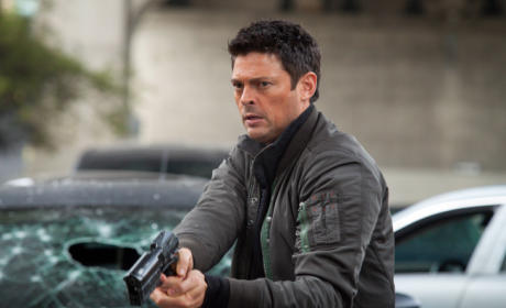 Almost Human Review: Multiplicity