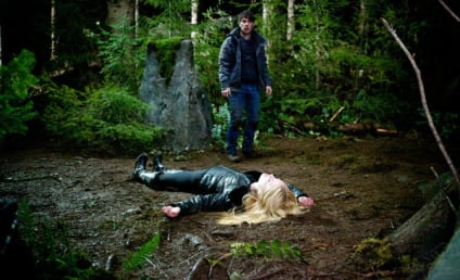 Grimm Review: Key Findings