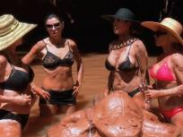 The Real Housewives of Orange County Season 11 Episode 13