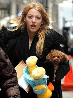 Blake and Furry Friends