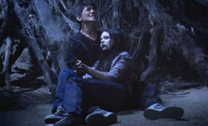 Teen Wolf Review: The Scorpion and the Turtle