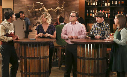 The Big Bang Theory Season 9 Episode 22 Review: The Fermentation Bifurcation