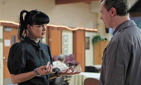 NCIS Review: Teddy and Rabbit
