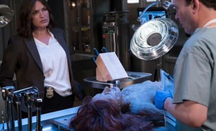 Law & Order: SVU Season 17 Episode 1 Review: Devil's Dissection