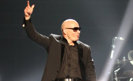 Glee Casting Rumors: Pitbull to Play...