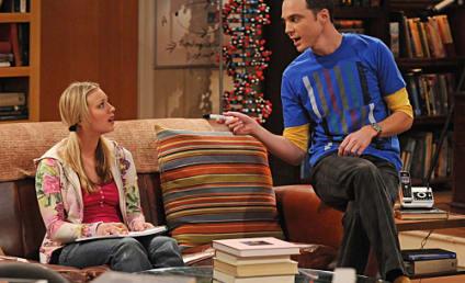 "The Big Bang Theory Episode Stills: ""The Gorilla Experiment"""