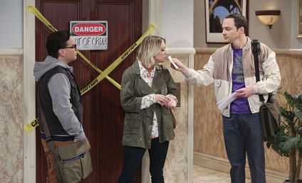 Watch The Big Bang Theory Online: Season 9 Episode 14