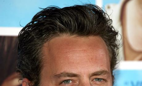 Matthew Perry to Recur on The Good Wife