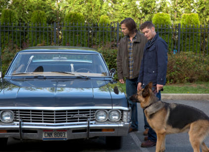 Watch Supernatural Season 9 Episode 5 Online
