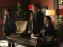 Agents of S.H.I.E.L.D. Season 2 Episode 20 Review: Scars