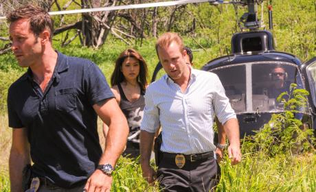 Hawaii Five-0 Season 5 Premiere: Trouble in Paradise?