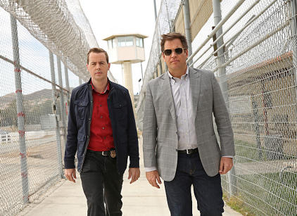 Watch NCIS Season 11 Episode 20 Online